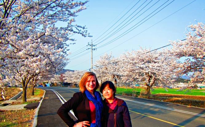 Eonyang Cherry Blossom Festival