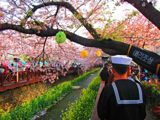 A sailor on lave enjoys the blossoms with his sweetheart nearby