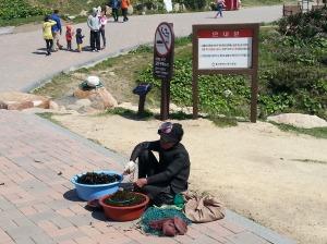 Haenyo diver in Ulsan