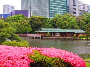 Japan Tea House